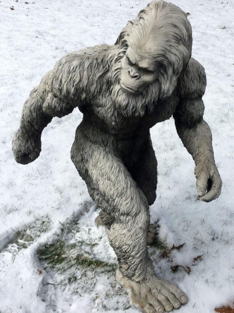 雪男のイメージ